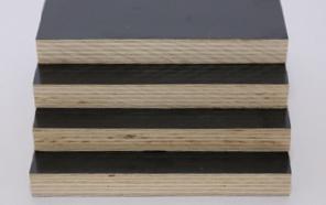 廊坊建筑木方